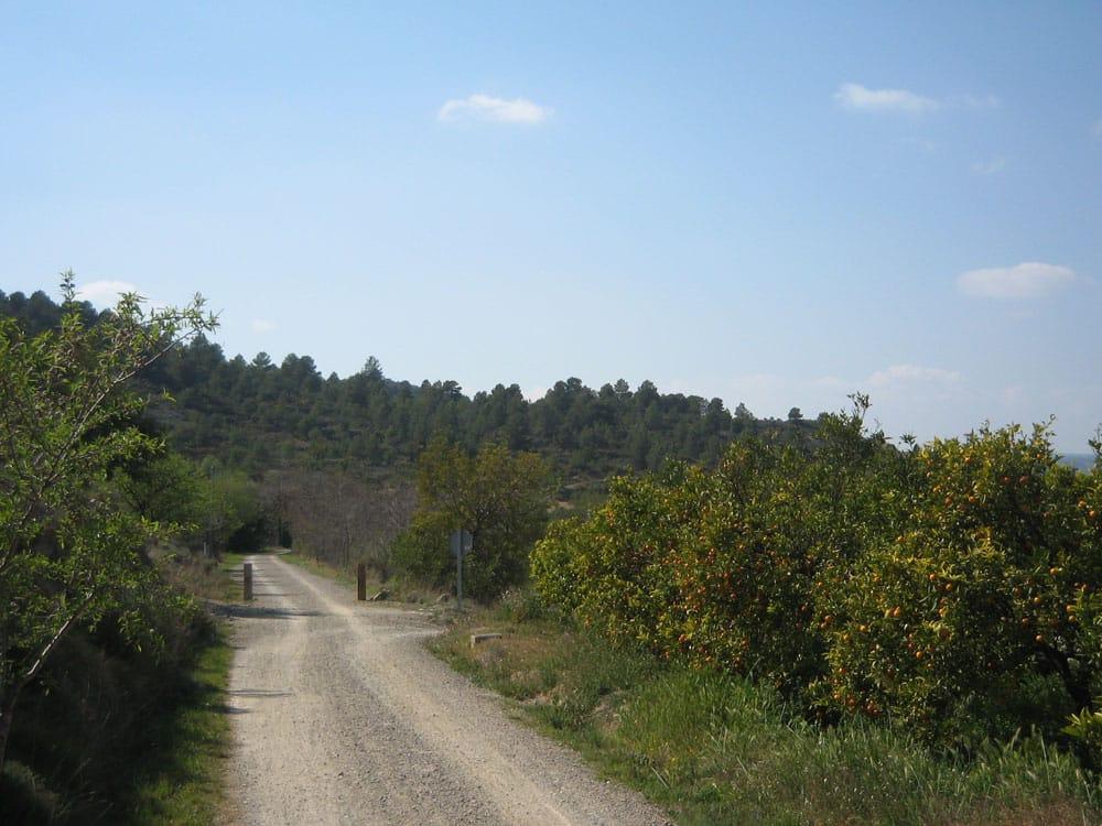 fietsen-valencia-via-verde