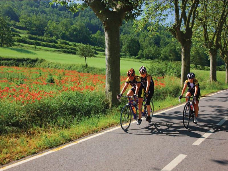 pyreneeen fietsen
